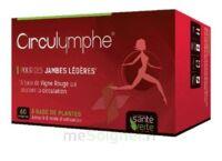 Santé Verte Circulymphe Triple Actions B/60 à MARSEILLE