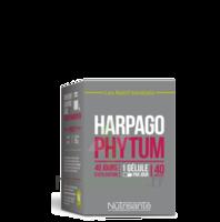 NUTRISANTE Harpagophytum Gélules B/40 à MARSEILLE