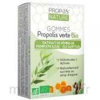 Propos'Nature Gomme de propolis pépins de pamplemousse, eucalyptus à MARSEILLE