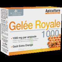 3 Chenes Phytotherapie Familiale Solution Buvable Gelée Royale 1000 10 Ampoules/10ml à MARSEILLE