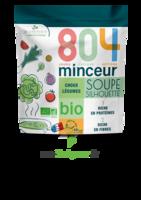 804® Minceur Soupe Silhouette Bio Sachet/180g à MARSEILLE
